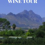 Going to Cape Town, South Africa? Learn how to plan a Stellenbosch Wine Tour.