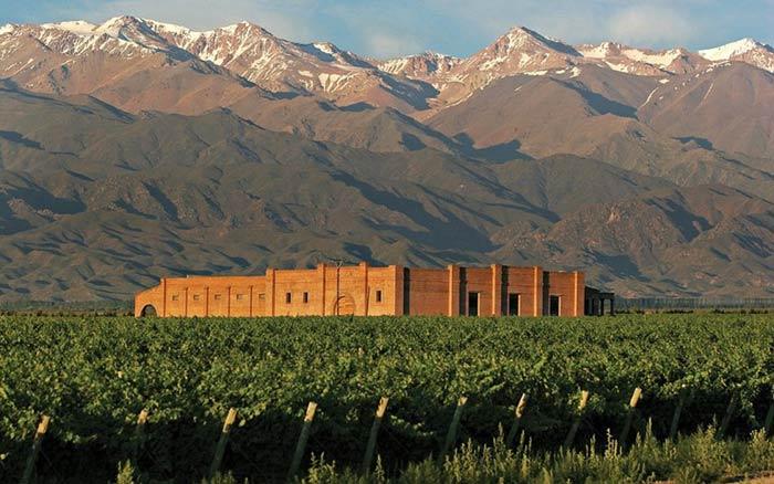 Andaluna Winery in Mendoza