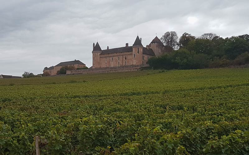Burgundy's gorgeous hills of vines