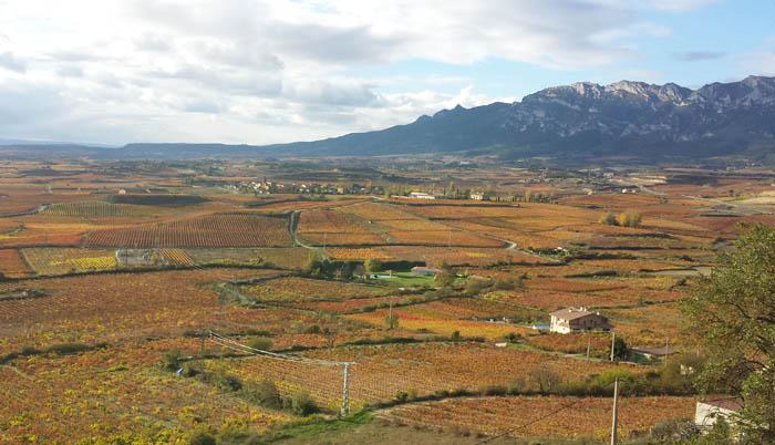 La Rioja in the fall