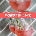 raspberry-lemon-gin-tonic