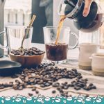 How to Make the Perfect Coffee