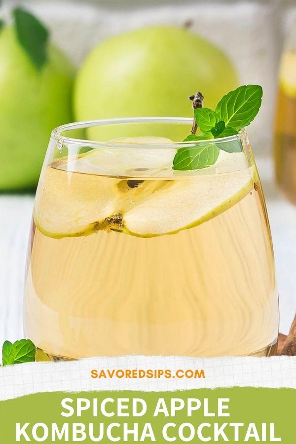 spiced kombucha cocktail